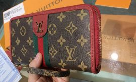 🌺 ארנק של LOUIS VUITTON 🌺